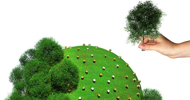 sustentabilidade-1-.png